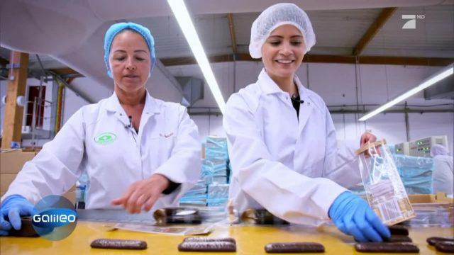 2 Tage Fließbandarbeit in der Plätzchenfabrik