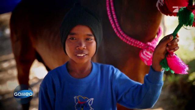 Die Kinder-Jockeys aus Indonesien