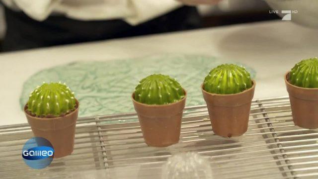 Essbarer Kaktus?: Die verrücktesten Dessert-Kreationen