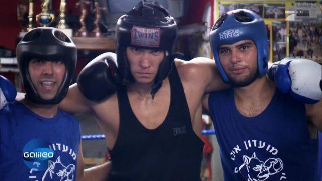 Sport verbindet! Im Jerusalem Boxing Club sind alle gleich