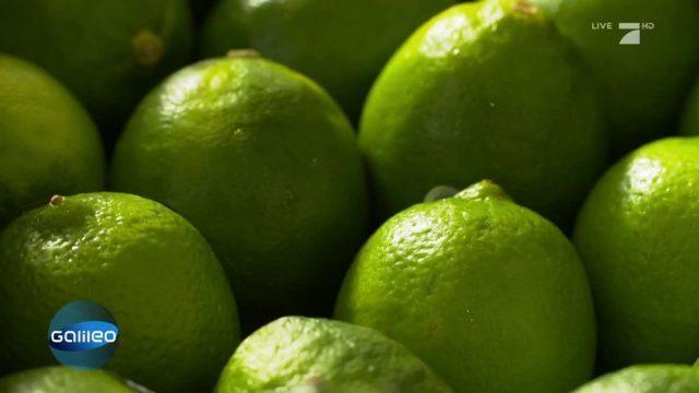 Trend-Frucht Limette