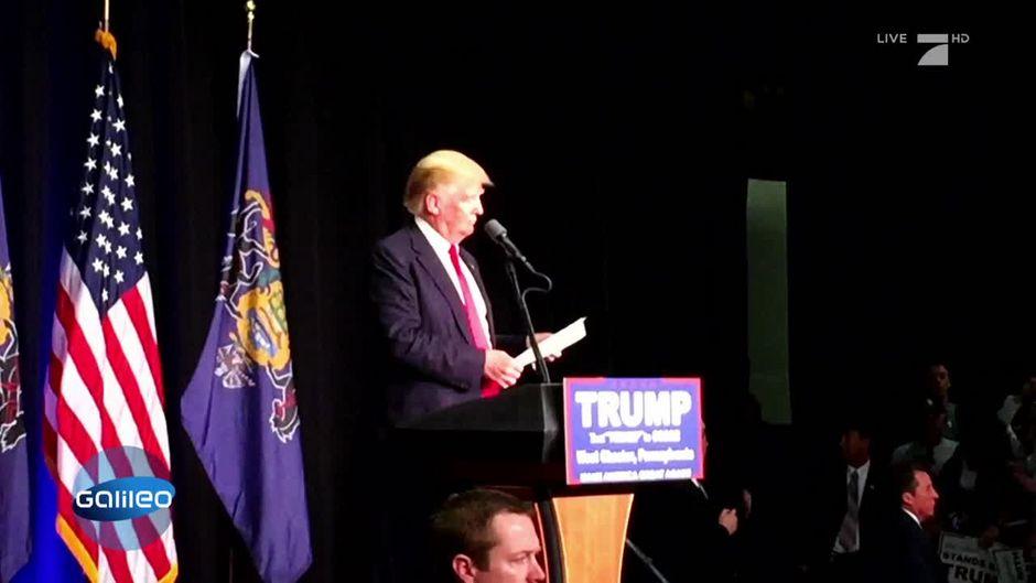 Was steckt hinter dem Erfolg Donald Trumps?