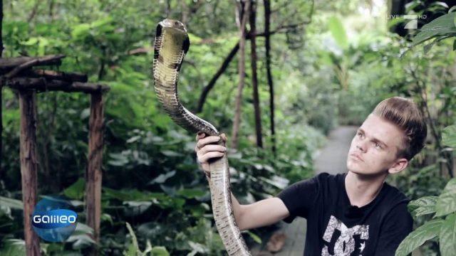 Der deutsche Schlangen-Teenie in Thailand