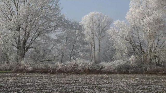 Tschüss, Frühling! Winter-Rückfall am Wochenende