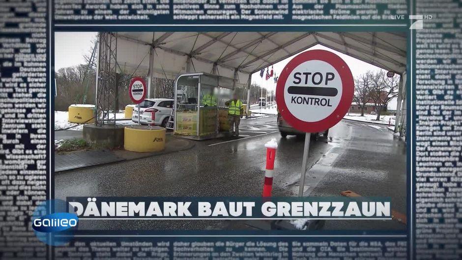 Was Soll Das Danemark Plant Einen Zaun Zu Deutschland