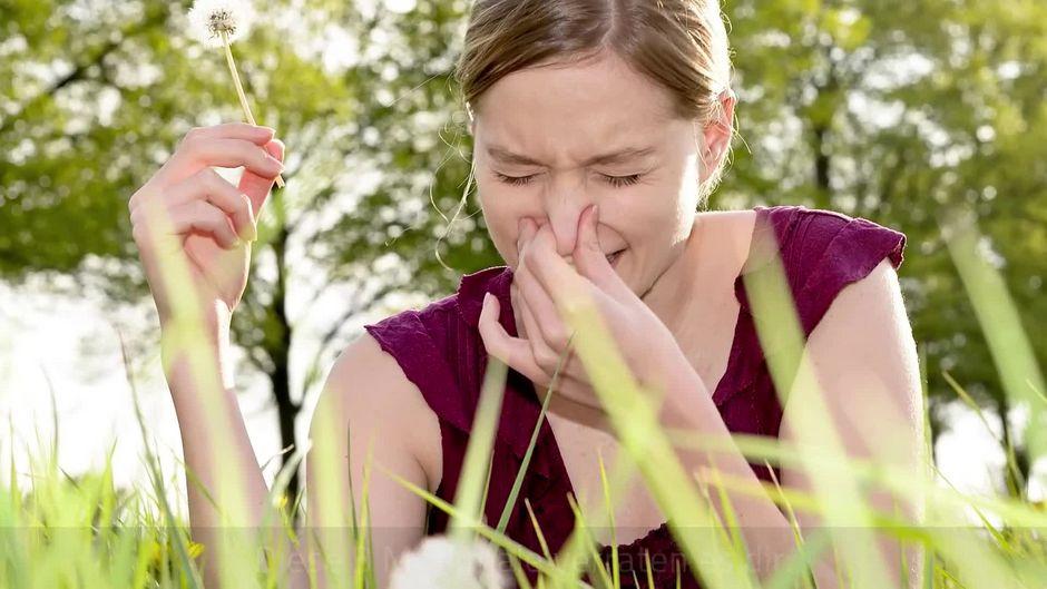 allergie oder schnupfen das sind die symptome. Black Bedroom Furniture Sets. Home Design Ideas