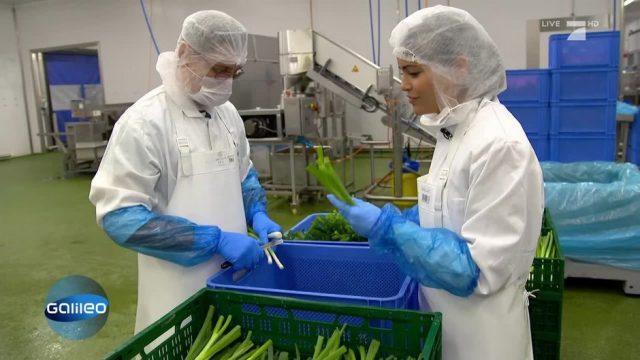 Der harte Job bei einem Freshfood-Hersteller