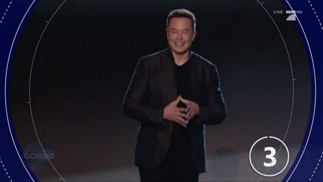 Elon Musk will Süßigkeiten-Firma gründen