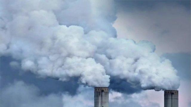"""Ende der Menschheit """"nahezu gewiss"""": Forscher warnt vor Massensterben"""