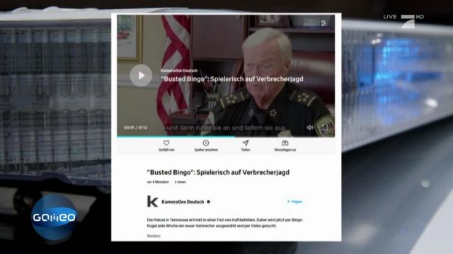 Fake News Check: Verbrecher-Bingo