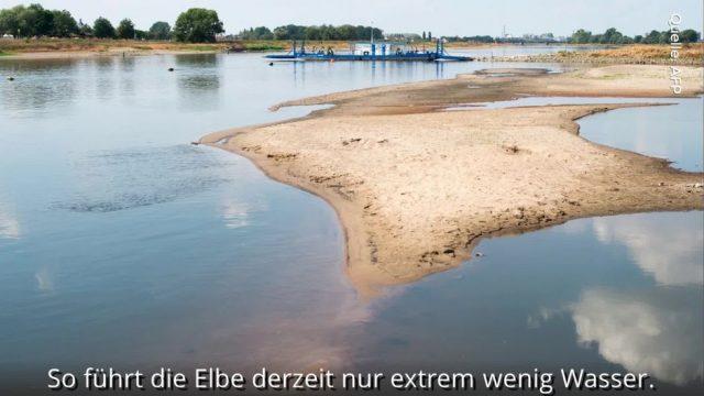Handgranaten und Minen: Niedrigwasser legt jede Menge Kriegsmunition in der Elbe frei