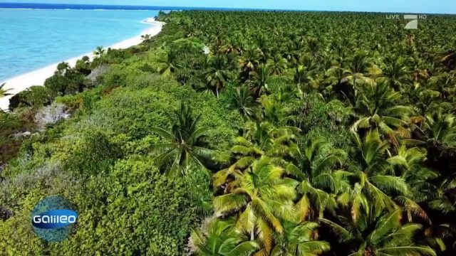 So sieht das Bikini-Atoll 60 Jahre nach den Atomtests aus