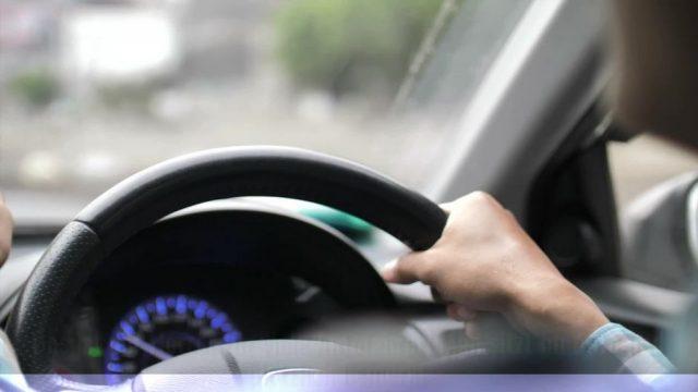 Unfall wegen einer Wespe im Auto: Wer bezahlt den Schaden?