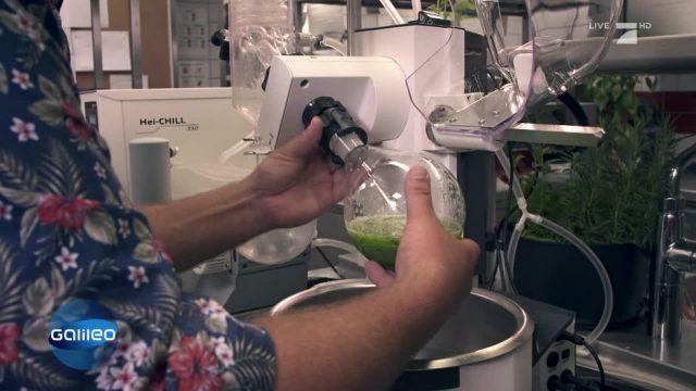 Koch vs. Wissenschaftler: Wer zaubert das bessere Gericht?