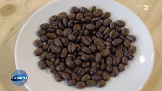 Kaffee: Welcher schmeckt am besten?
