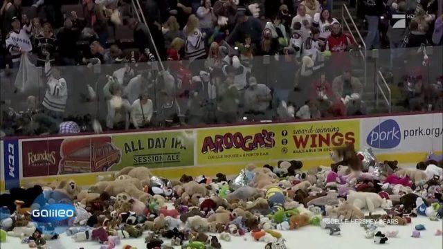 Guter Zweck: Eishockey-Fans werfen Teddybären auf das Eis