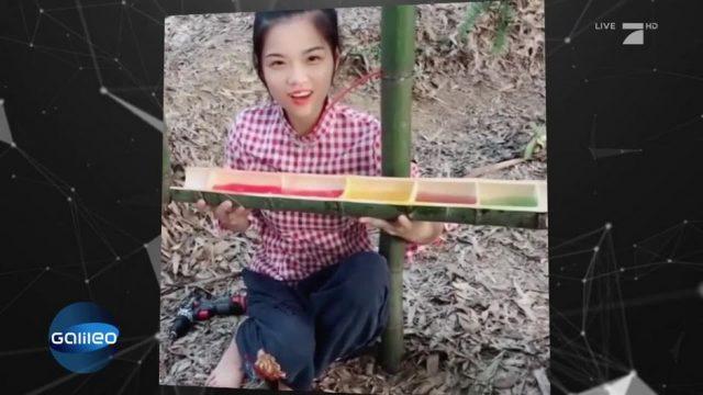 Bekommt man aus Bambus wirklich Wein?