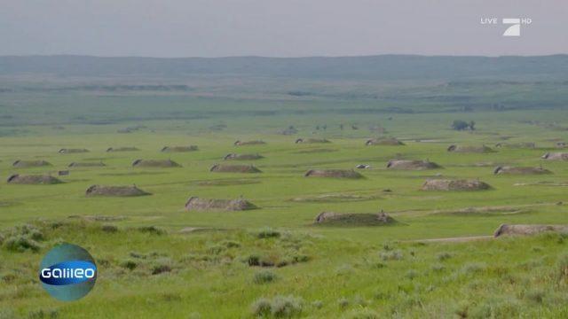 Die größte Bunkersiedlung der Welt