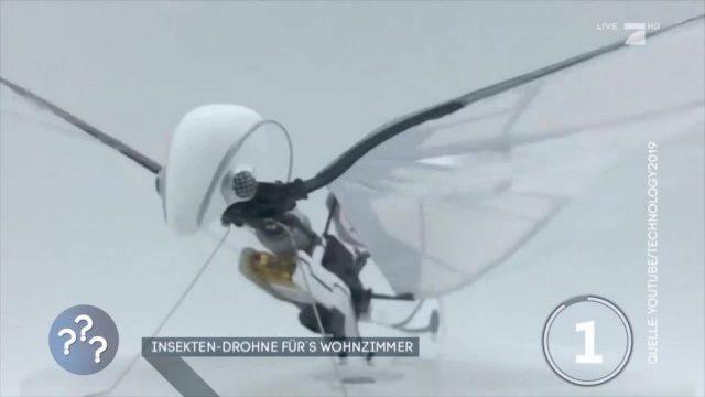 Die Insekten-Drohne für's Wohnzimmer