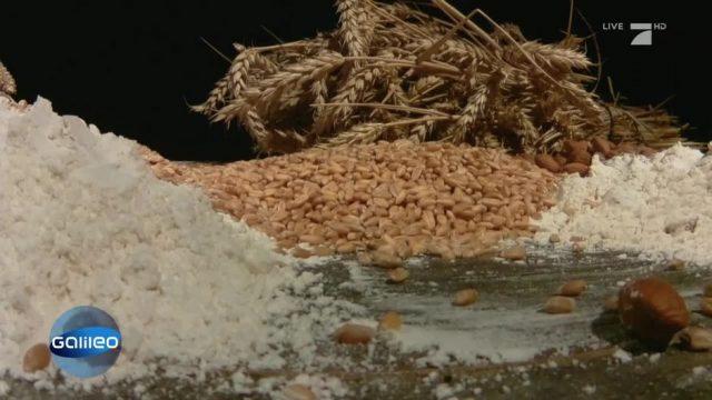 Was taugen die Alternativen zum Weizenmehl?