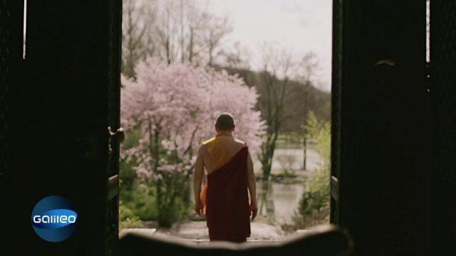 Das einzigartige Leben des Dalai Lama