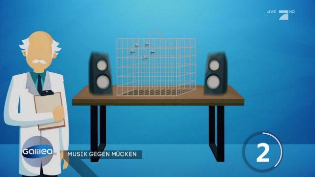 Gegen Mücken: Elektronische Musik