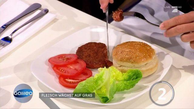 Künstliches Fleisch: Mithilfe von Gras züchtbar