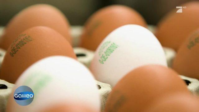 Was hat es mit den neuen Beschriftungen auf den Eiern auf sich?
