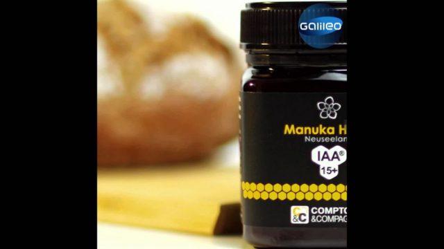 Manuka, eine teure Rarität: Was der Wunderhonig alles kann