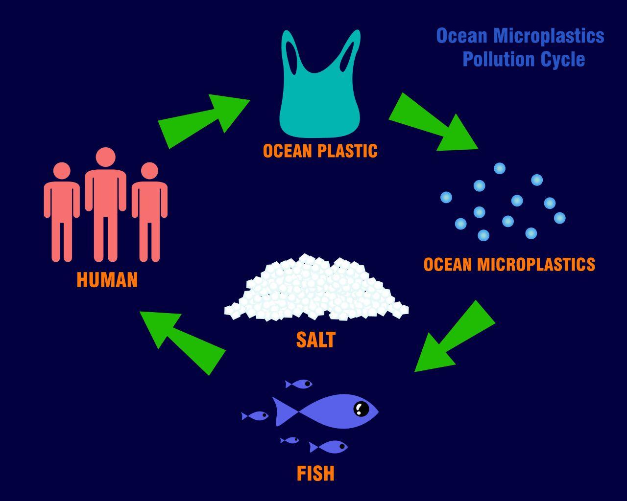 Mikroplastik Weeltmeere