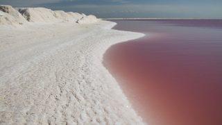 Pinkfarbener See