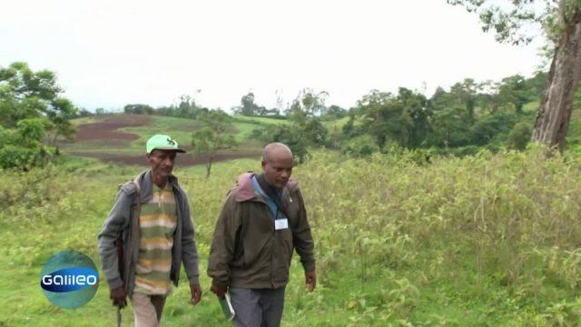 Diese fünf Dinge benötigt ein Wildlife-Ranger in Äthiopien