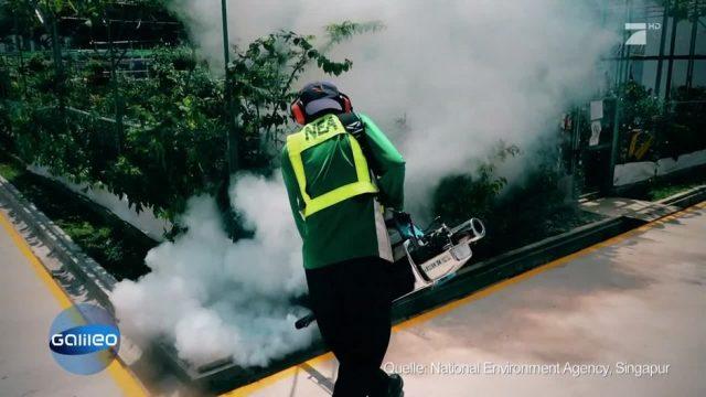 Singapurs Moskito-Polizei
