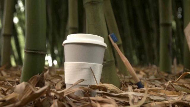 Alternative zu Plastik: Wie gut sind Produkte aus Bambus?