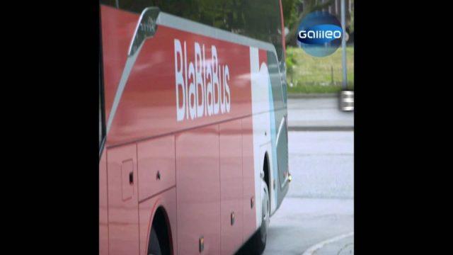 Fernbus-Duell: Wer bringt dich schneller ans Ziel?