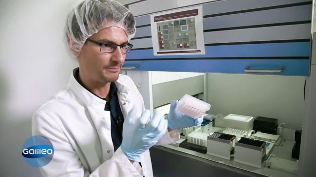 Genetic Testing: Was DNA-Tests über uns verraten