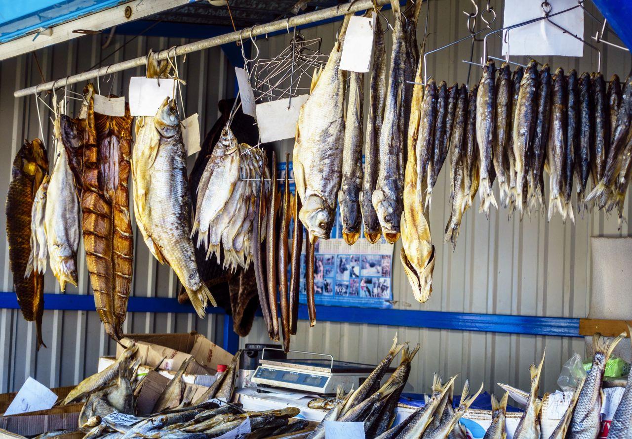 Guter Fang! Diese Speisefische solltest du dir angeln
