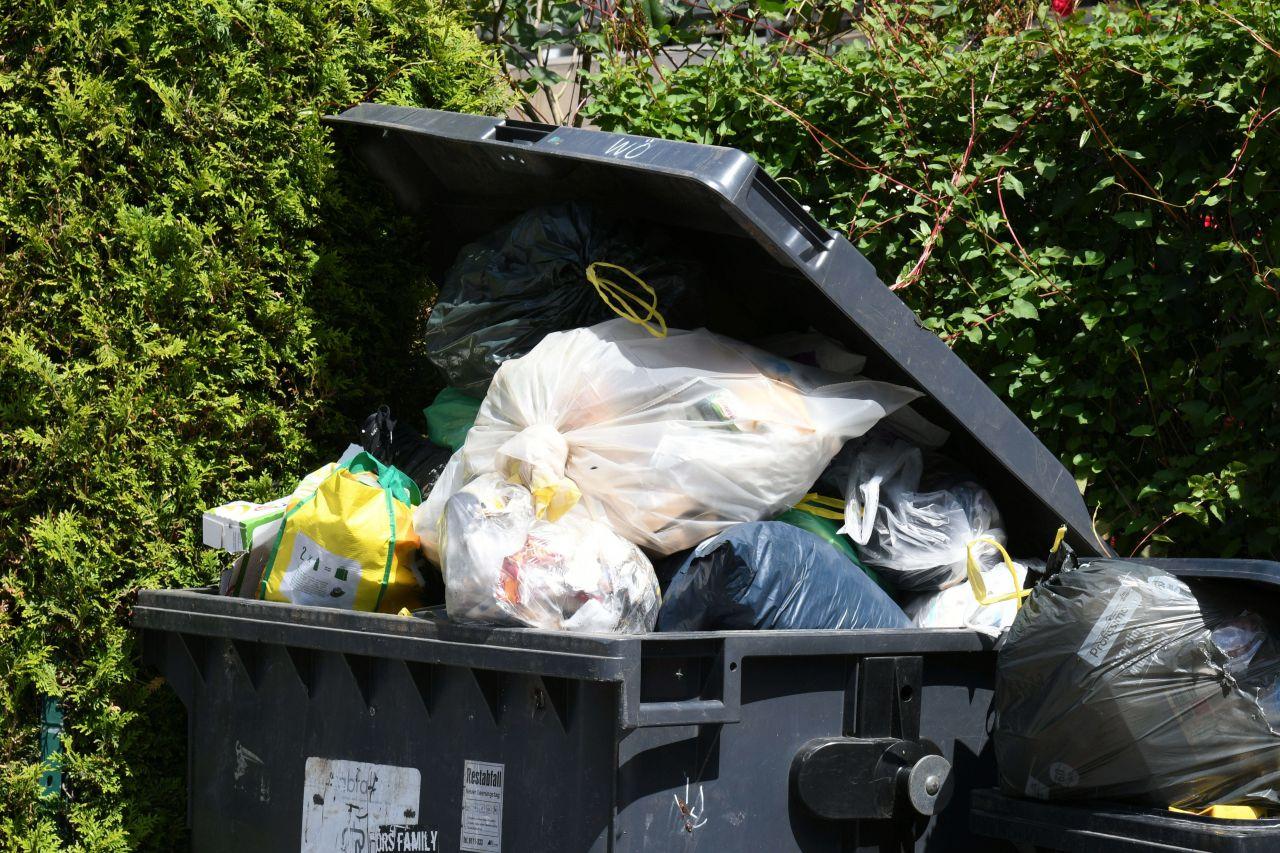 Bye-bye Verschwendung: So wirst du zum Lebensmittel-Retter