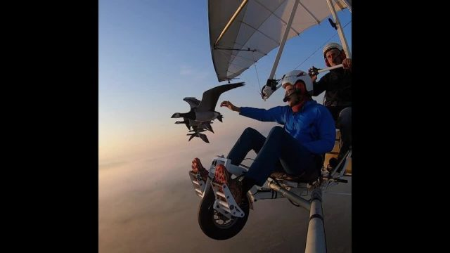 Der mit den Vögeln fliegt: In der Luft mit dem Birdman - 10s