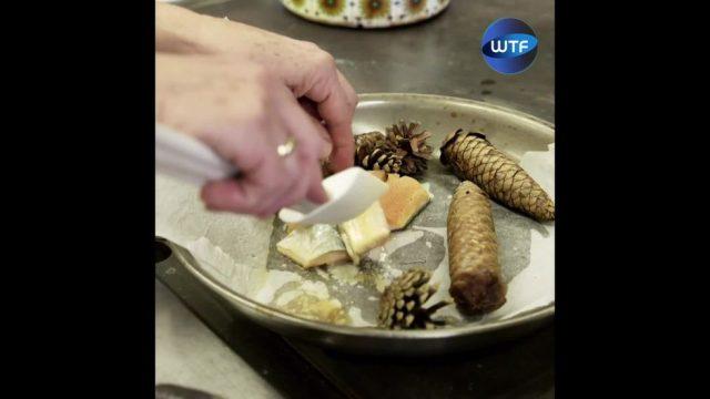Food-Trend: Waldküche