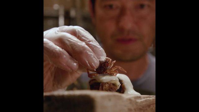 Invasives Sushi - eine besondere Delikatesse - 10s