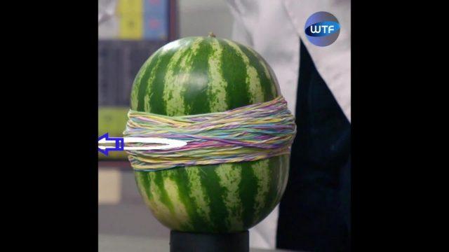 Physikexperimente zum Staunen
