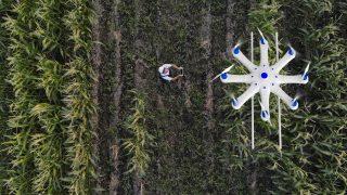 Drohne in der Landwirtschaft