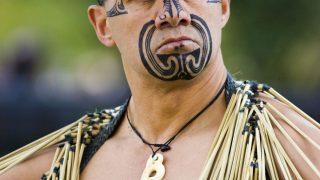 Damals wurden die Tätowierungen bei den Maori-Kämpfern mit Albatrosknochen unter die Haut gebracht.