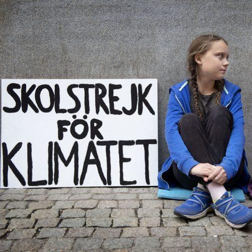 Greta Thunberg Junge Protestler
