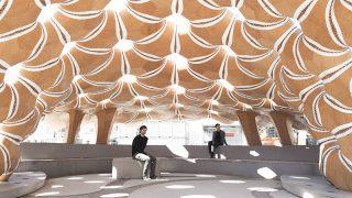 Seeigel inspirierter Pavillon