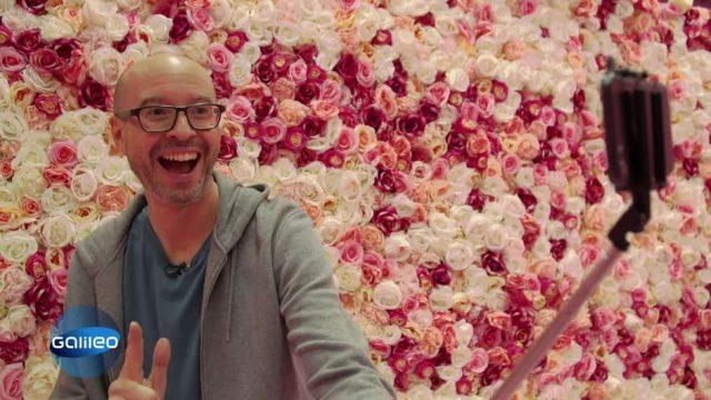 Alles für das perfekte Bild: Was taugt das Instagram-Museum in Düsseldorf?