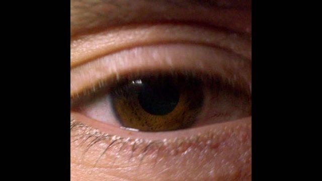 Das Auge: Ein Sinnesorgan zum Staunen - 10s