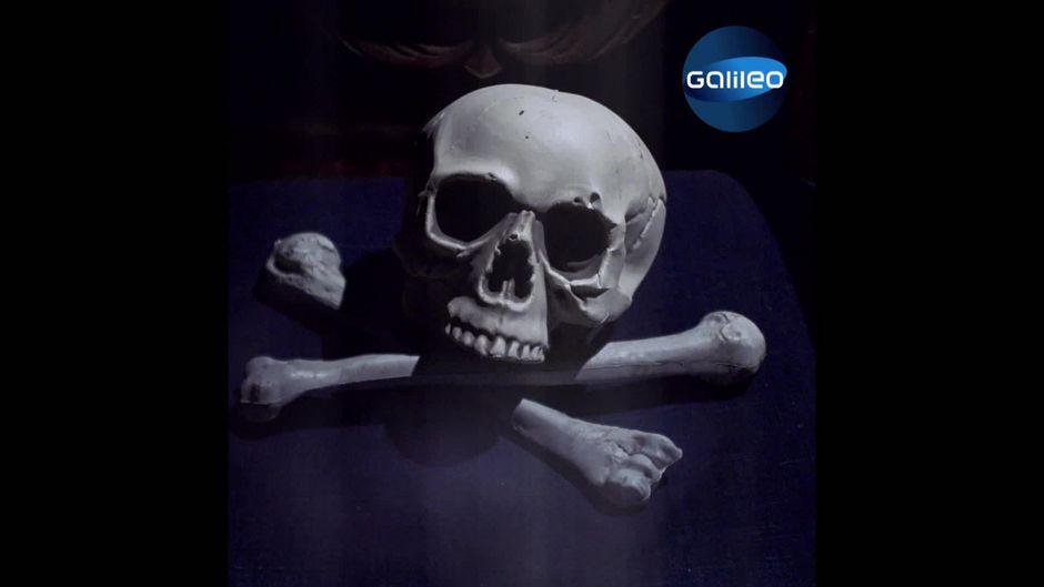 Geheimbund Skull and Bones