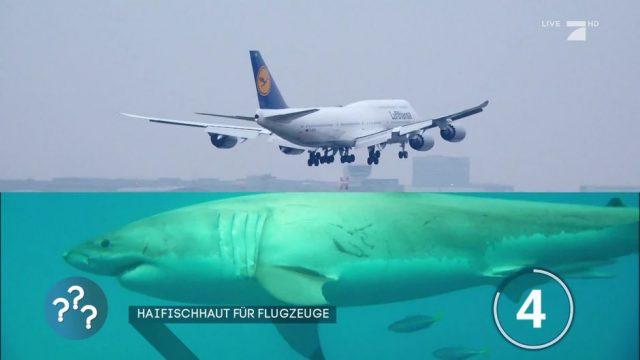 Haifischhaut für Flugzeuge: Was soll das bewirken?